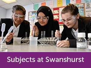 Subjects-at-Swanshurst.jpg